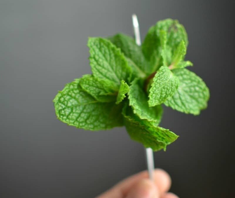 Creative Ideas for Cocktail Pick Garnishes